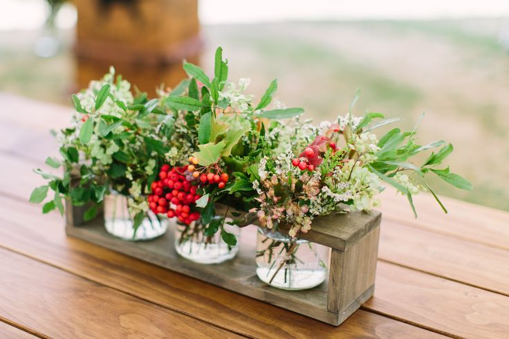 Red berries always look so beautiful against green foliage.  Photo: Michaela Janetzko