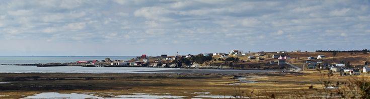 Cape Saint Mary's