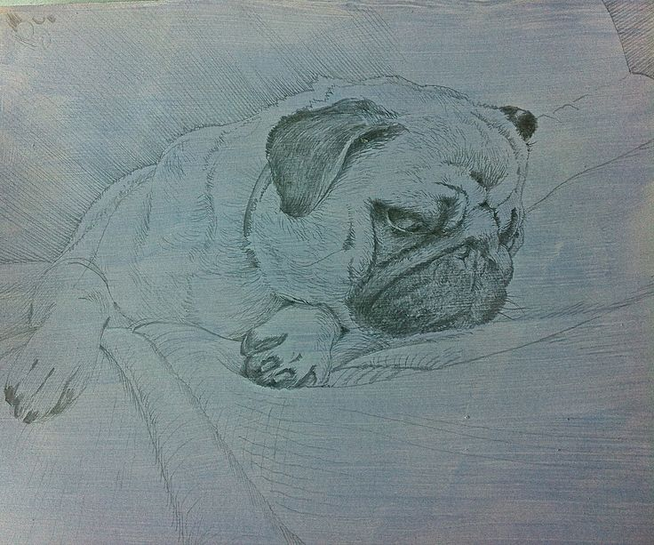 Let me sleep Silverpoint on blueish background