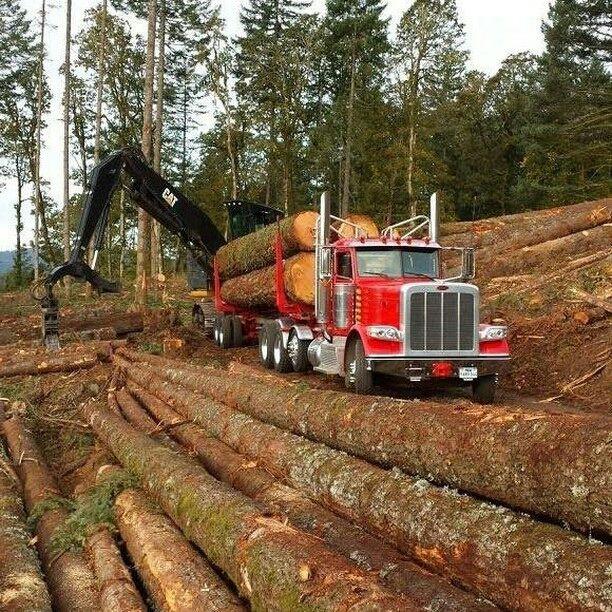 Peterbilt custom 389 heavy haul loaded with logs