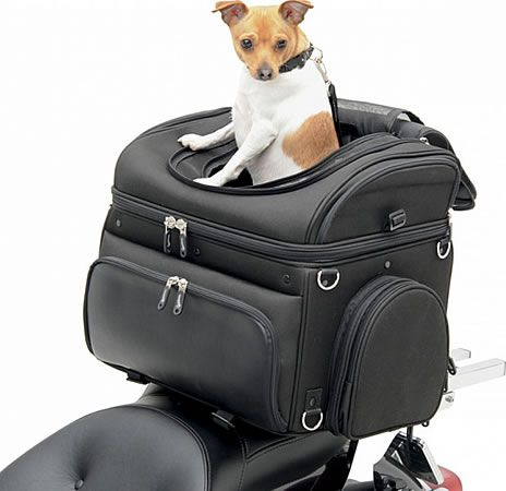 """Dog Carriers For Motorcycles   Motorcycle Pet Carrier - """"Pet Voyager"""" - by Saddlemen"""