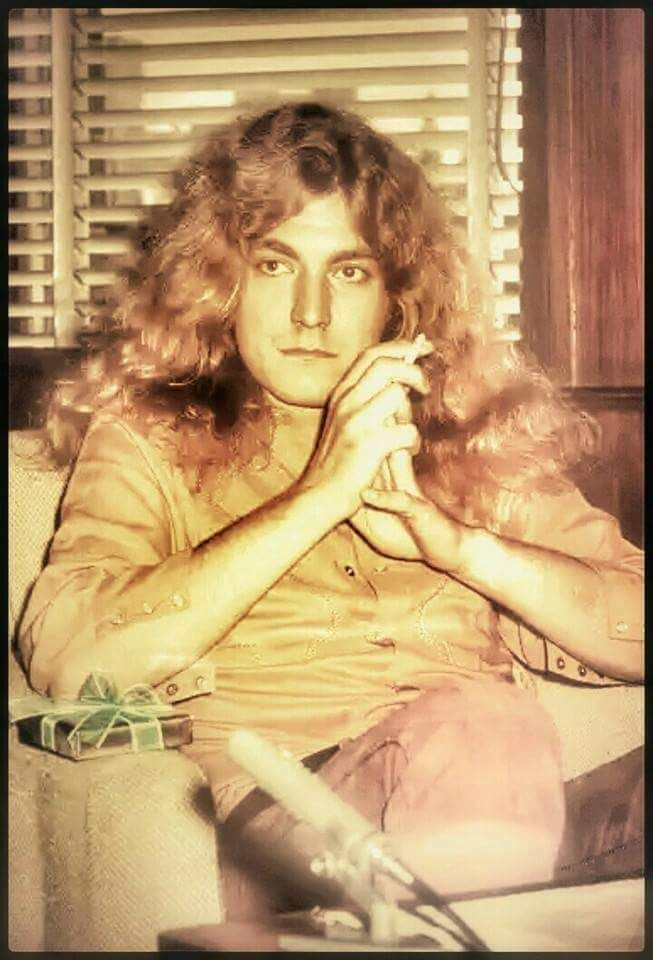¥ ROBERT PLANT ¥ LED ZEPPELIN ¥