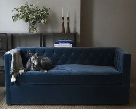 7 Stylish New Traditional Small Scale Sofas — Apartment Therapy's Annual Guide