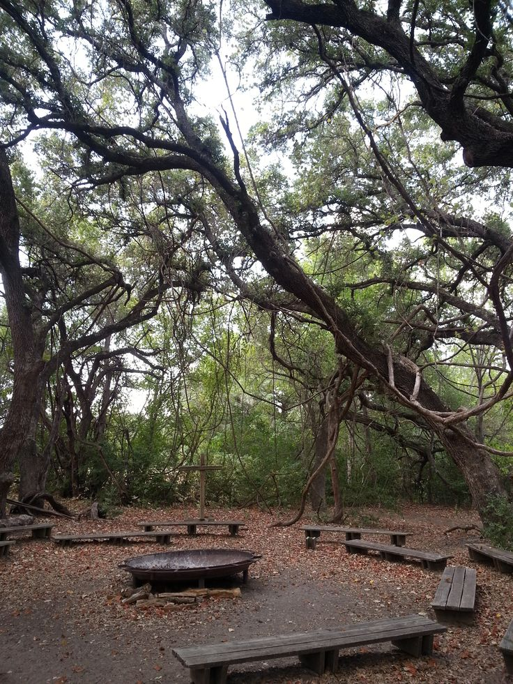The Meadows fire pit at Camp Tejas in Giddings, TX. Everyone should get to experience nature this way.