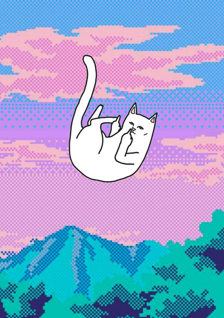 Ripndip Cat