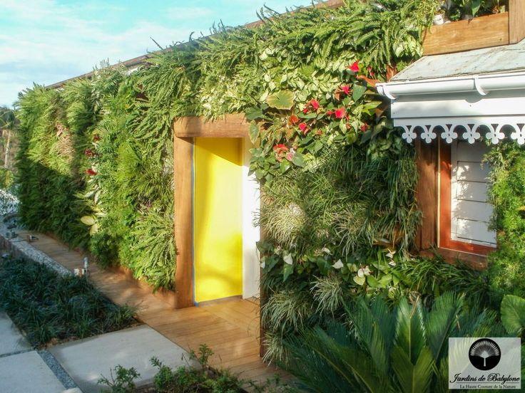 Jardin exotique: cap sur Saint-Barthélemy! - Jardins de Babylone
