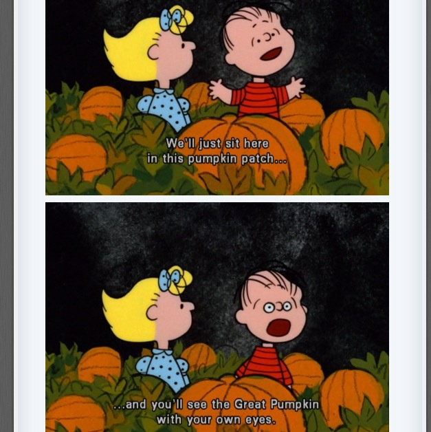 Its The Great Pumpkin Charlie Brown Quotes: 17 Best Images About Halloween On Pinterest