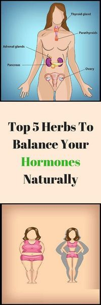 5 herbs to balance hormone