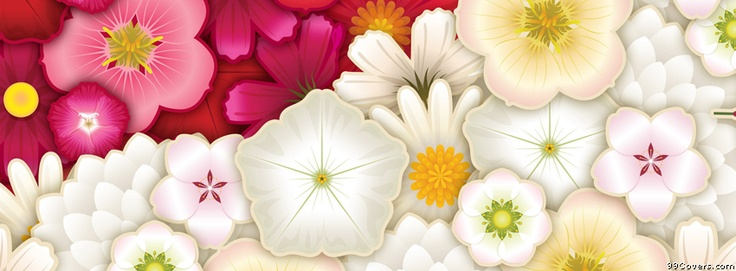 Flowers 6 Facebook Covers