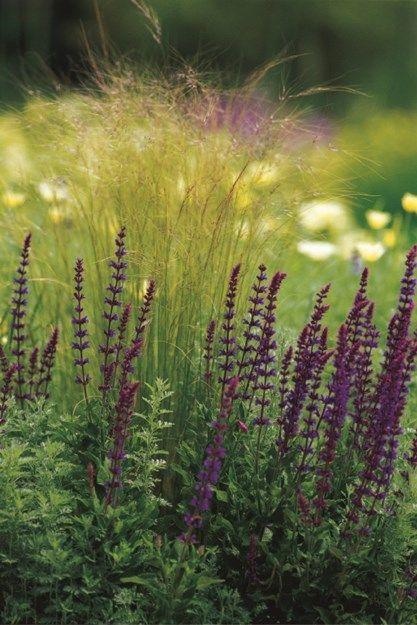 Top 25 best Garden design magazine ideas on Pinterest