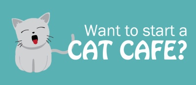 Cat Cafe: Happy Cats, Happy Customers, and Happy Owner!