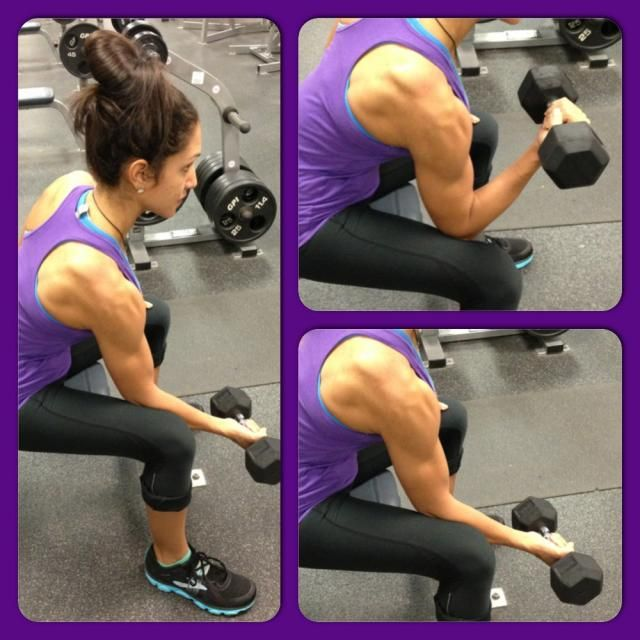 Seated Concentration Curl Exercise. See the rest of this great upper body bench workout from Angeles Burke
