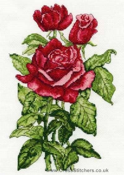 Roses - DMC Cross Stitch Kit: