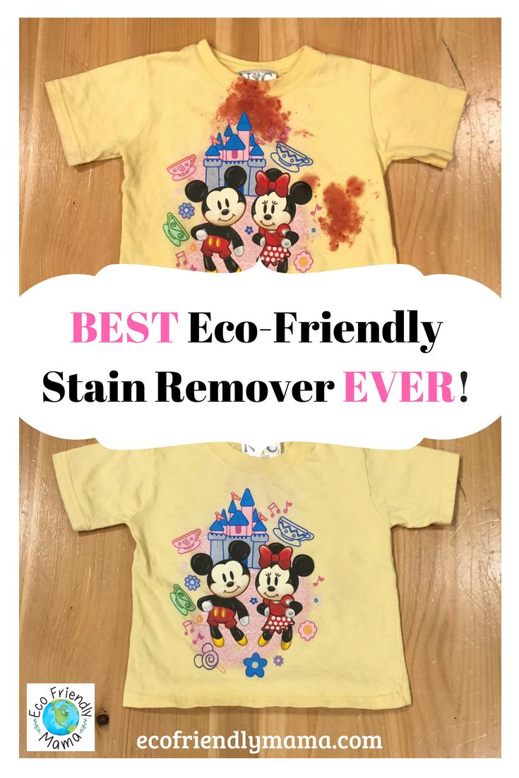 Best Eco Friendly Stain Remover Spray Ever Best Of Eco Friendly