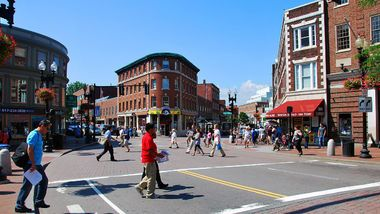Harvard Square neighborhood guide: The best things to do