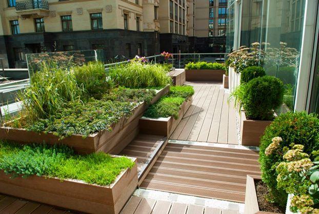 Сад на крыше - это ваш уголок природы в городе.