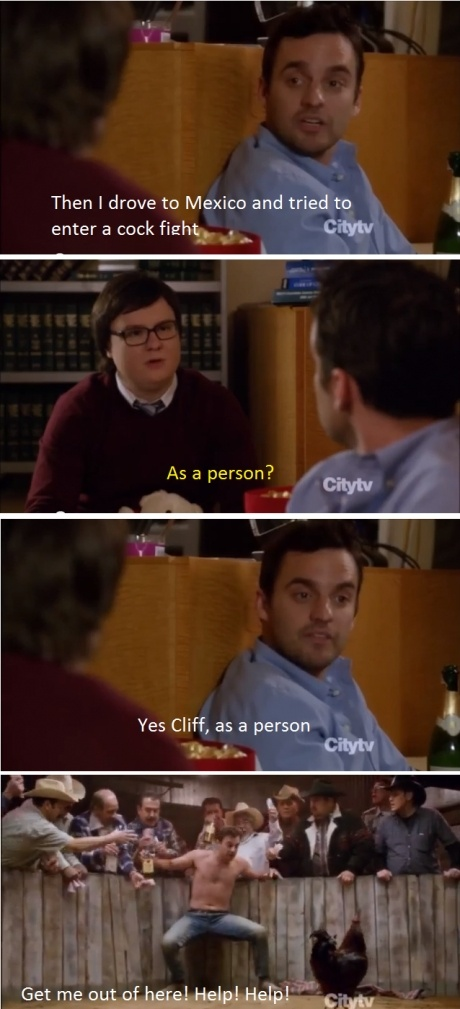New Girl - Nick Miller, Nick Miller from the streets of Chicago