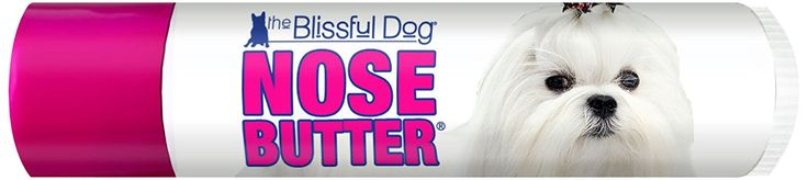 The Blissful Dog Maltese Nose Butter >>> Visit the image link more details.