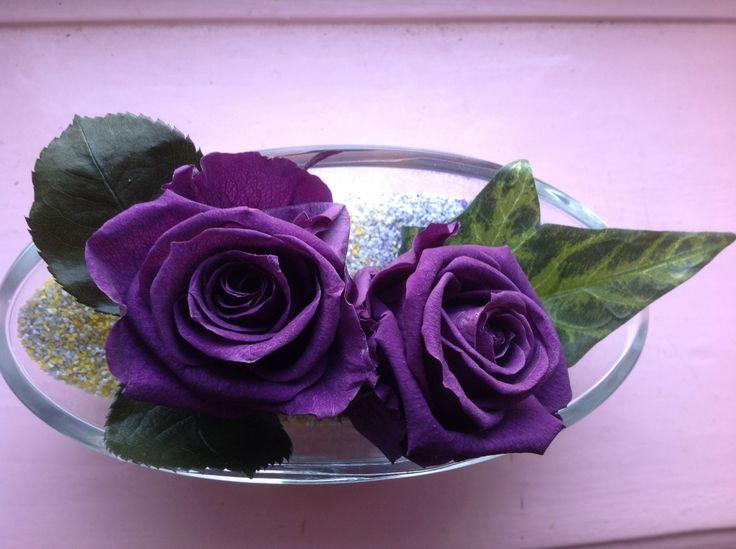 Fleurs stabilisées, roses violette