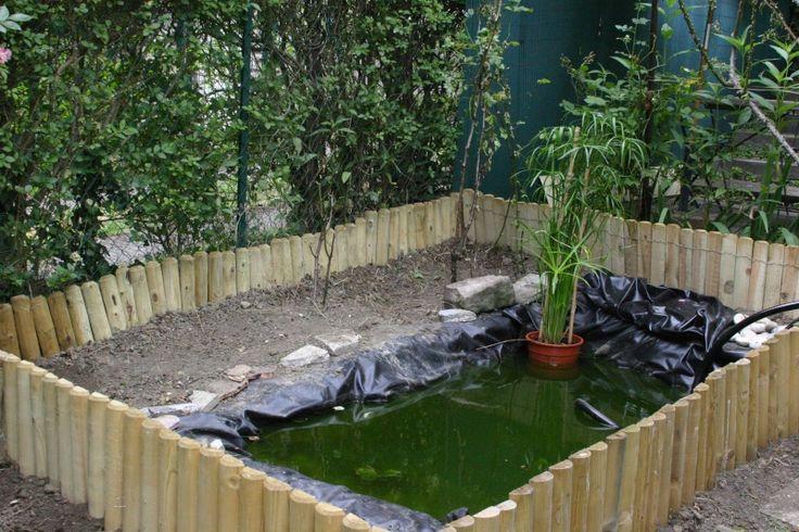 25 beste idee n over terrarium pour tortue op pinterest for Bassin exterieur pour tortue de floride