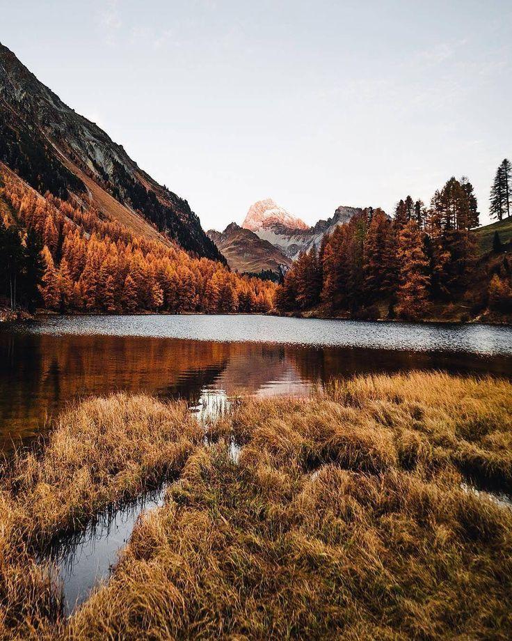 It's always autumn somewhere  @diaryofseya via @blackleafdotcom / Instagram