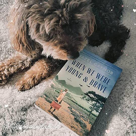 Click on the image to read my complete book review. #bookstadog #poodles #poodlestagram #poodlesofinstagram #furbabies #dogsofinstagram #bookstagram #dogsandbooks #bookishlife #bookishlove #bookstagrammer #books #booklover #bookish #bookaholic #reading #readersofinstagram #instaread #ilovebooks #bookishcanadians #canadianbookstagram #bookreviewer #bookcommunity #bibliophile #whenwewereyoungandbrave #hazelgaynor #bookreview
