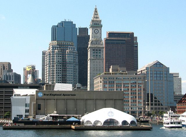 Top Tourist Attractions in Boston: New England Aquarium