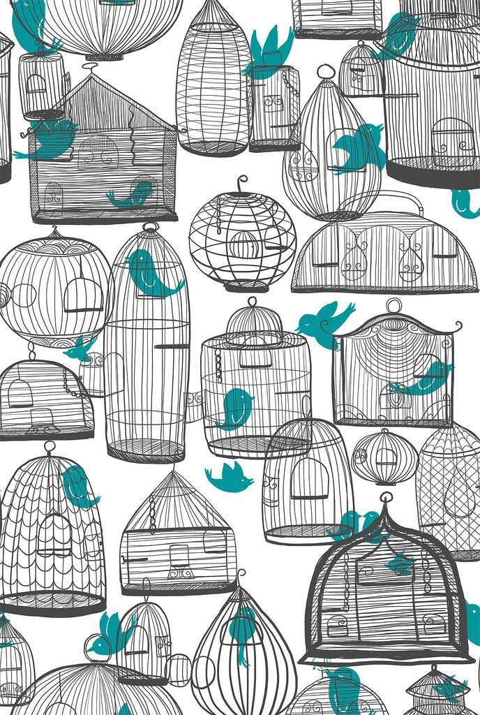 Bird cage #illustration