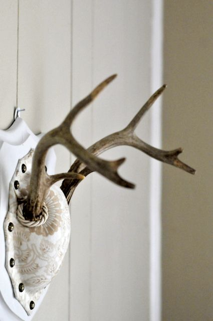 DIY: Vintage antler mount- shabby chic way to mount our deer.. doubt the man will like this but makin antlers chic could turn em less recheck in our home lol