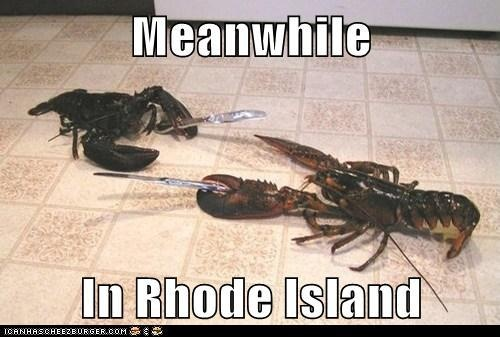 Look out! There's a lobster loose!Knife Fight, Lobsters Knife, Awesome, Rhode Island, Funny Pictures, Funny Random, Funny Stuff, Humor, Things