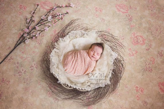 Newborn Digital Backdrop Baby Girl // Spring Vintage Nest