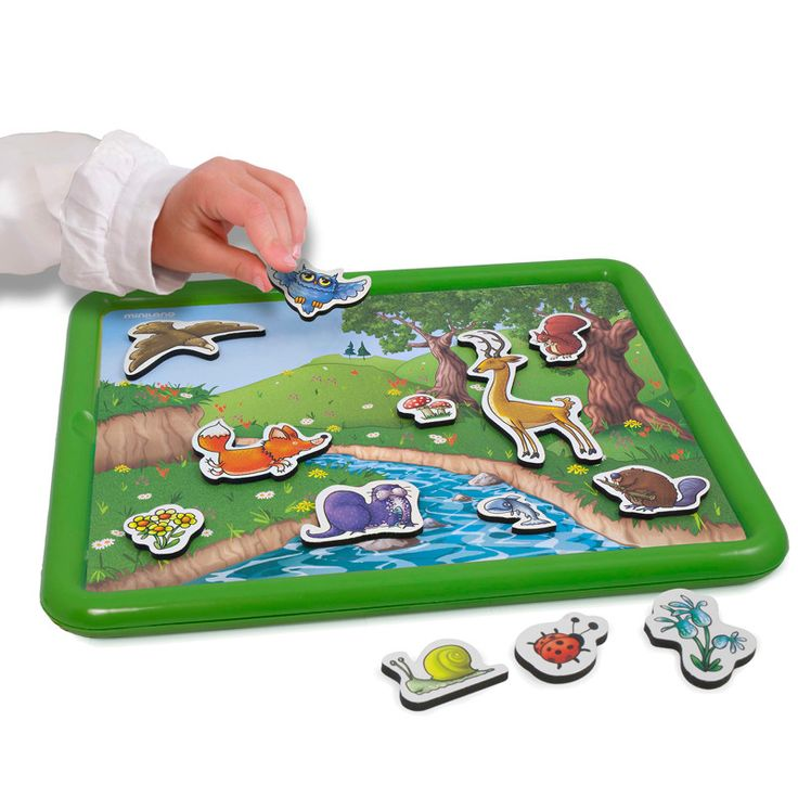Animal Magnetic Board