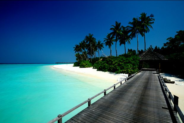 Maldives and best time to visit. Real full info on the website.