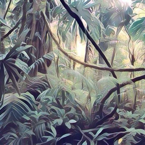 Thick jungle (surrealism style). Selva espesa (estilo surrealismo). #selva #selvas #jungle #jungles #tree #trees #arbol #arboles #bosque #bosques #forest #forests #art #arts #arte #artes #painting #paintwork #paintworks #picture #pictures #landscape #landscapes