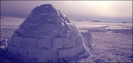 Make the most of those icy and snowy days with a fun, challenging activity investigating how to build an igloo using ice cubes. Involve your children in testing ideas and solving problems to find out more about cold places.