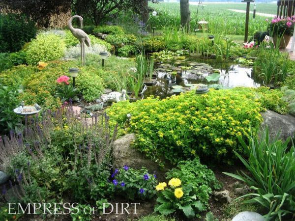 17 best images about projects to try on pinterest half for Small pond care