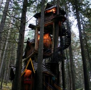 Fantasy Forest Tree House....now this is a tree house!