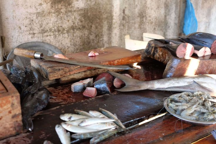 Would you like to have a fresh fish for lunch? All you need to do is go to the market and buy one.