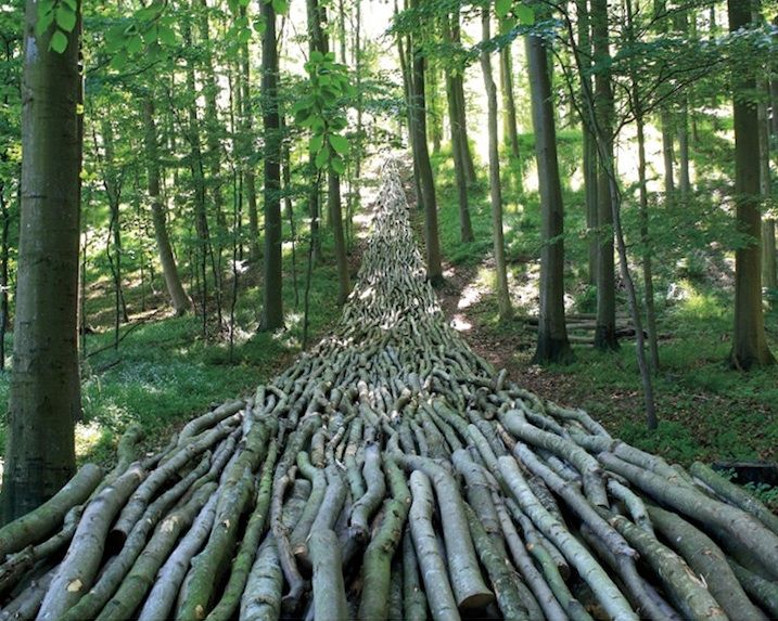 """Organic Highway by Mikael Hansen Sycamore poles Langeland, Denmark, 1995  from """"12 Amazingly Creative Examples of Environmental Art"""" - My Modern Metropolis"""