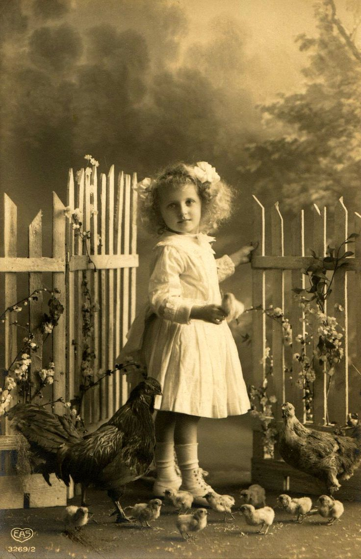 old postcard of young girl posed with chickens - EAS