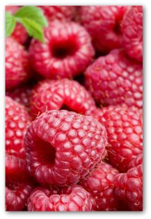 Raspberry patch