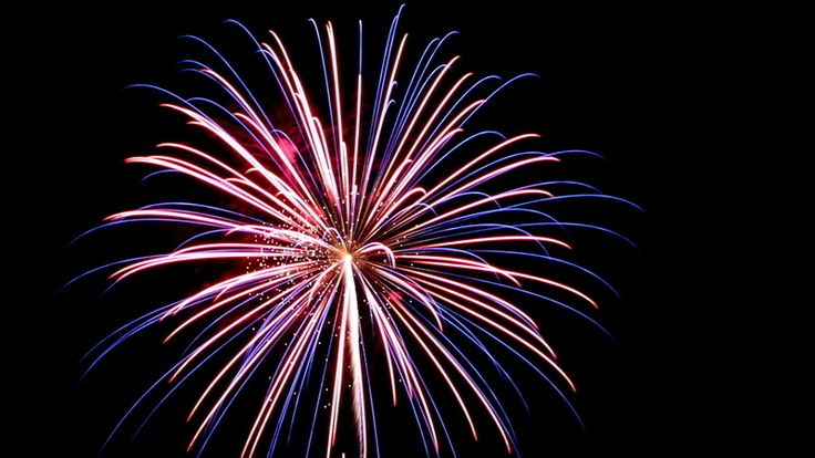 Petition · Rick Snyder: Ban Private Fireworks · Change.org