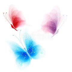 colored butterflies on a white background