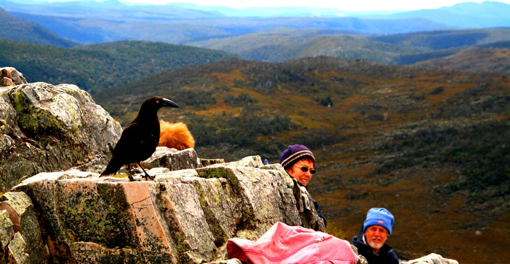 Bird's eye view of Cradle Mountain, Tasmania