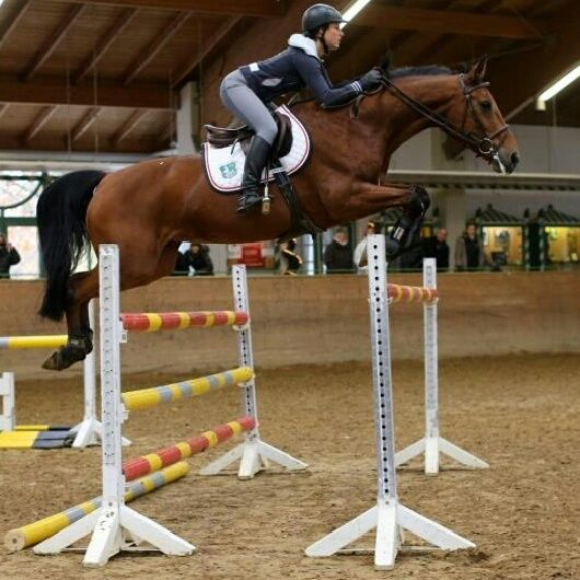 1000+ images about Equestrians - 54.9KB