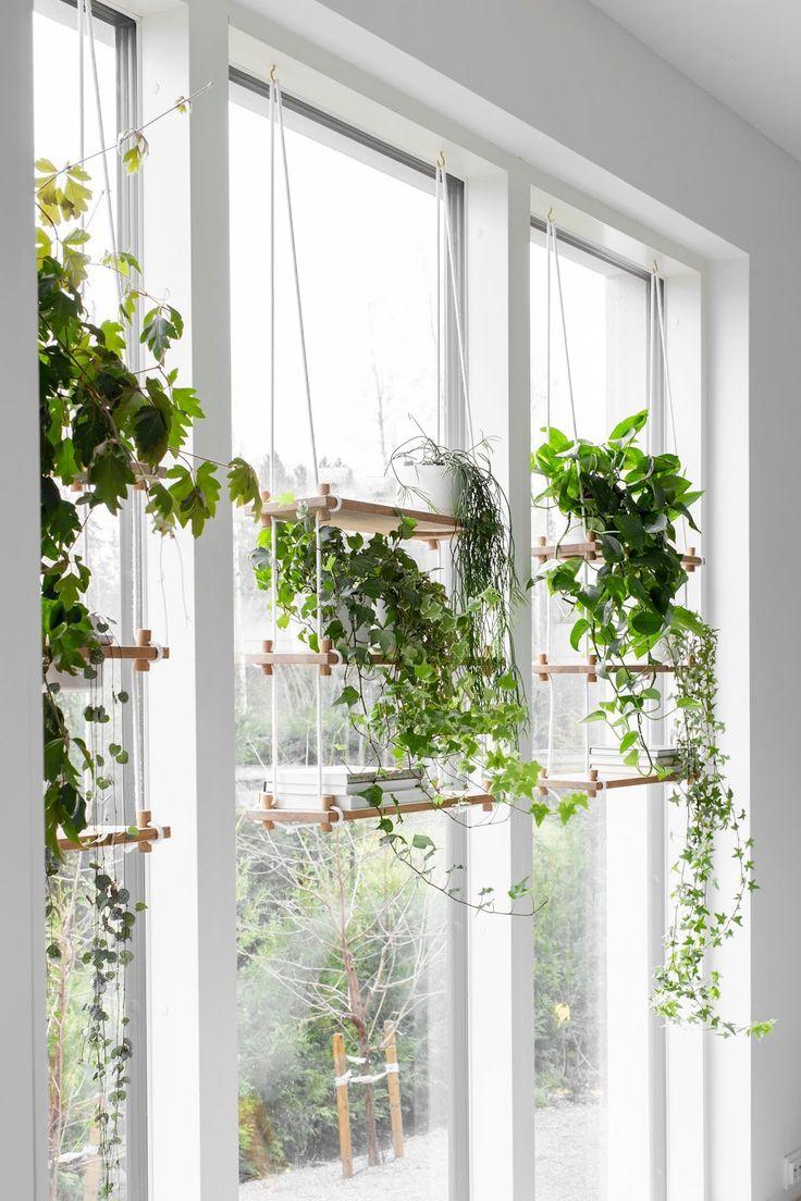 Viherseina Ikkunaan Plant Decor Indoor Hanging Plants Indoor