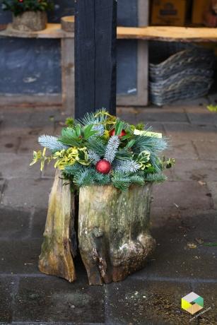 kerststuk op oude boomstam