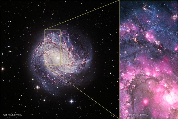 """In Messier 83, a barred spiral galaxy some 15 million light years away, scientists have observed a """"remarkable"""" outburst from a black hole -- its X-ray output has increased by a factor of 3,000.: Black Holes, Galaxy M83, Nasa S Chandra, Xray, Space, X Ray, Extraordinary Outburst, Blackhole"""