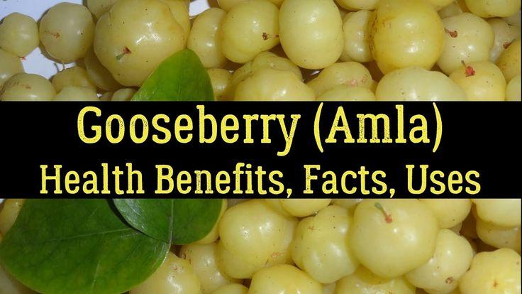 Gooseberry (Amla) - Health Benefits, Facts, Uses