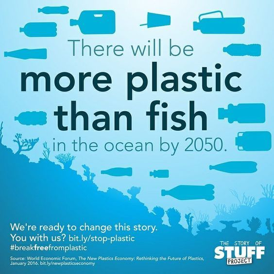 There will be more plastic than fish in the ocean by 2050 ...